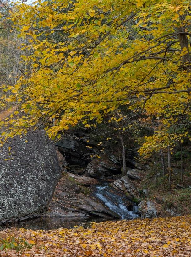 Small Flume on Harvey's Creek (Nikon D800E, Nikkor 85mm F1.8G)